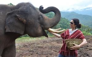 Travel Savvy Mom